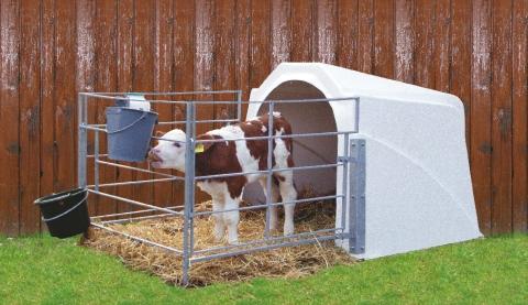 calf-house-v