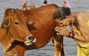 India_Hindu_Festival5324_fa_rszd
