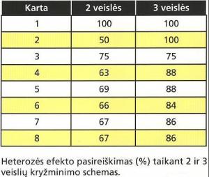 lentelė