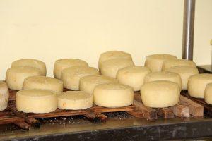 cheese-801183_960_720