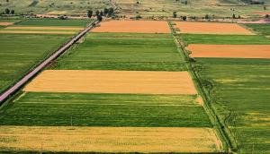 Farmland_