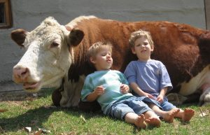 childrenandcow