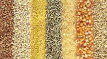 Žemės ūkio naujienos