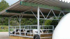 agroinfo, grupiniai nameliai, pieno ukis, zemes ukis